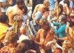 Hippie Organisation